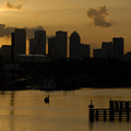 Evening In Tampa by David Lee Thompson