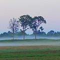 Evening Mist by Expressionistart studio Priscilla Batzell