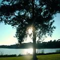 Evening by Nereida Slesarchik Cedeno Wilcoxon