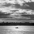 Evening On South River - Bw by Brian Wallace