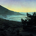 Evening On The California Coast by Ellen Cotton