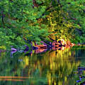 Evening On The Humber River - Paint by Steve Harrington