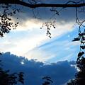 Evening Sky by Lee Hudson