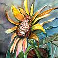 Evening Sun Flower by Mindy Newman