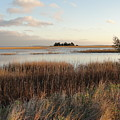 Evening Sunset Marsh by Patricia Hart