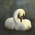 Evening Swan by Phyllis Howard