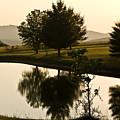 Evening Tide On The Farm by Douglas Barnett