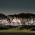 Dusk At Fort Fisher by Phil Mancuso