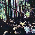 Evening View Of Little Stony Creek by Kendall Kessler