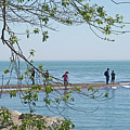 Ever-changing Pelee by Ann Horn