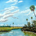 Everglades Inlet by Riley Geddings