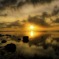 Everglades Sunrise by Tress Chapin