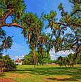 Evergreen Plantation by Steve Harrington