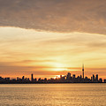 Every Morning Is Different - Toronto First Sunrays In Cyber Yellow  by Georgia Mizuleva