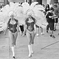 Everyday Showgirls  by Valerie Brown