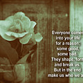 Everyone Comes Into Your Life For A Reason. Motivational Quote by Daniel Ghioldi