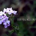 Everything Will Be Okay by Cody Hoffman