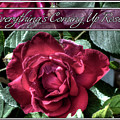 Everything's Coming Up Roses by Leslie Montgomery