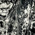 Evil In Black And White by B R Wiatrek
