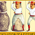 Evolution Of A Pitcher by Maria Coulson
