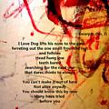 Excerpts No. 1 by AJ Walker