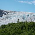Exit Glacier by Michael Ver Sprill