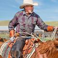 Experienced Cowboy by Todd Klassy