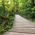 Explore Nature by Jagmeet Singh Sanga