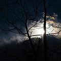 Exposing For The Light 2 by Steven Poulton