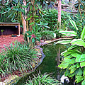 Expressionalism Beautiful Garden  by Aimee L Maher ALM GALLERY
