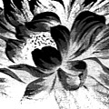 Expressive Black And White Abstract Floral A8816 by Mas Art Studio