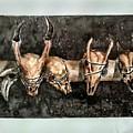 Extinction by M Jonathan Haominlal Haokip