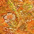 Extravaganza Orange by Anne-Elizabeth Whiteway