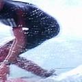 Extreme Surfing by Stanley Morganstein