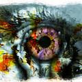 Eye In Hands 001 by Gull G
