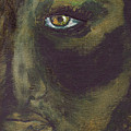 Eye Of Ivy by Shelley Jones