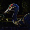Eye Of The Crane by David Lee Thompson