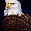 Eye Of The Eagle by Robert M Walker