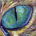 Eyenstein by Amelie Simmons