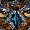 Eyes In The Night... by Alessandro Della Pietra