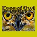 Eyes Of Owls 18 Shirt by John D Benson