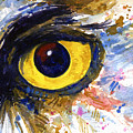 Eyes Of Owl's No.6 by John D Benson