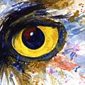 Eyes Of Owl's No.6 by John D Benson