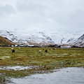 Eyjafjallajokull Iceland by Deborah Smolinske