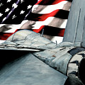 F-14 And Flag by Shari Nees