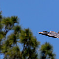 F22 Raptor Flying Low by Mary Kathryn Riggins