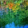 Fabian Pond Reflections3 by Randy Bell