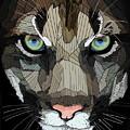 Face De Puma by Erman Akyol