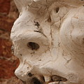 Face On San Trovaso Bell Tower by Michael Henderson