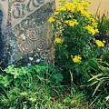 Failte Stone, A Welcome In Ireland by Marcus Dagan